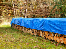 Pile Of Acacia, Chestnut And Oak Logs In A Woodland Clearing And Covered In Tarpaulin To Keep Them Dry