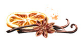 Christmas spices with Dried orange slices, star anise and vanilla sticks. Hand drawn watercolor illustration isolated on white background