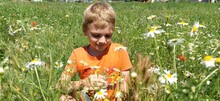 Sremska Mitrovica, Serbia. June 30, 2020, A Happy Boy With Blond Hair Sits On The Lawn And Sniffs Wildflowers. The Child Looks Down And Smiles. Daisies, Yarrows And Green Grass Grow On The Field