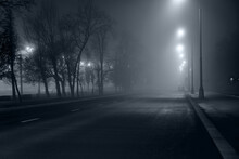 Night Road In Fog, Long Exposu...