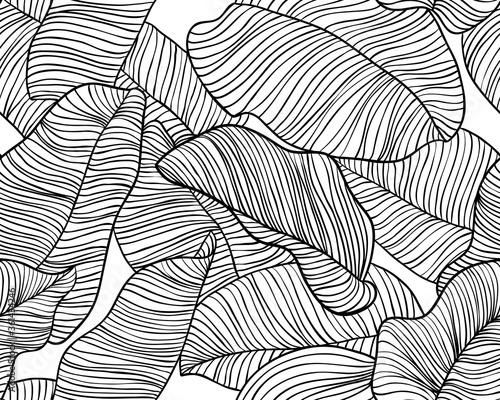 Fototapeta Seamless pattern, hand drawn outline black ink banana leaves on white background obraz