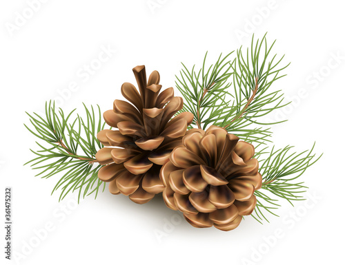 Fotografering Pine cone with a branch of spruce needles isolated on a white background