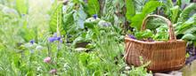 Fresh Vegetables In A Wicker B...