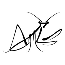 Black Mantis Drawn In A Flat Style. Design Can Be Used For Insect Logo, Mascot, Icons, Badges, Albums, Tattoos, Banners, Souvenirs, Print On T-shirts, Animal Symbol. Isolated Vector Illustration