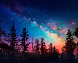 Milky Way In Night Forest Scene With Fog And Sunset