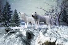 3D Rendered Fantasy Winter Landscape With Two White Wolves - 3D Illustration