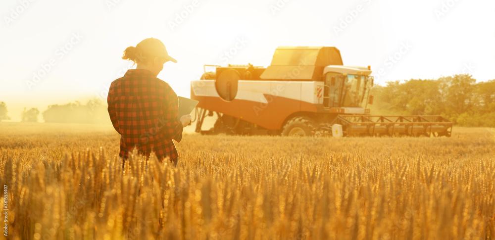 Fototapeta Woman farmer with digital tablet on a background of harvester. Smart farming concept.
