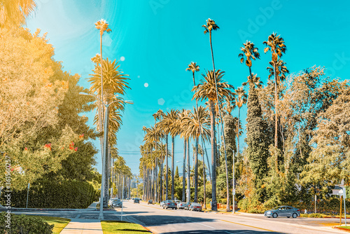 Urban views of the Beverly Hills area and residential buildings on the Hollywood hills Wallpaper Mural