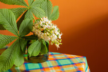 Tender Chestnut Spring Blossom Flowers And Green Leaves In Transparent Glass Of Water On Vibrant Contrast Orange Background. Photo With Free Blank Copy Space For Text