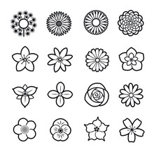Flower Line Icon Collection