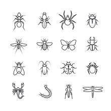 Insects Icon Thin Line