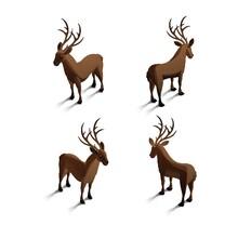 Isometric Reindeers
