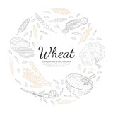 Wheat Organic Product Banner Template, Agricultural Plants and Baked Products of Round Shape, Bakeshop, Cafe, Packaging, Menu Design Hand Drawn Vector Illustration