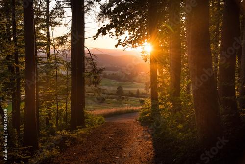 Photo Sonnenuntergang am Eichberg im Aargau in der Schweiz