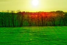 Widok Na Soczyste Zielone Pola