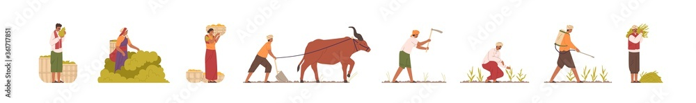 Fototapeta Set of Indian farmers in traditional clothes vector flat illustration. Collection of rural man and woman plowing field by cow, collect, carry, watering and mowing harvest. Agricultural workers