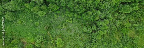 Tela forest top view, landscape panorama view of summer forest with quadrocopter aeri