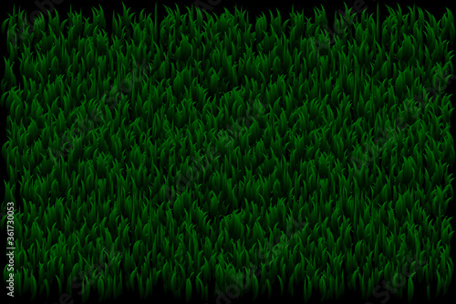 Obraz na plátně Green grass seamless texture - summer background