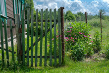 A Wooden Gate Made Of A Green Painted Fence And A Mesh Fence, Which Can Be Seen Garden Flowers Against A Forest And Sky.