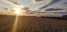 Iowa Harvest Sunset