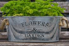 Flowers & Garten - Blumentopf ...