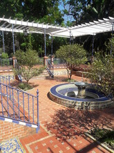 Garden Patio In Buenos Aires Argentina 2019
