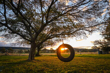 Dark And Moody Image Of Tyre Swing Hanging From Tree At Sunset
