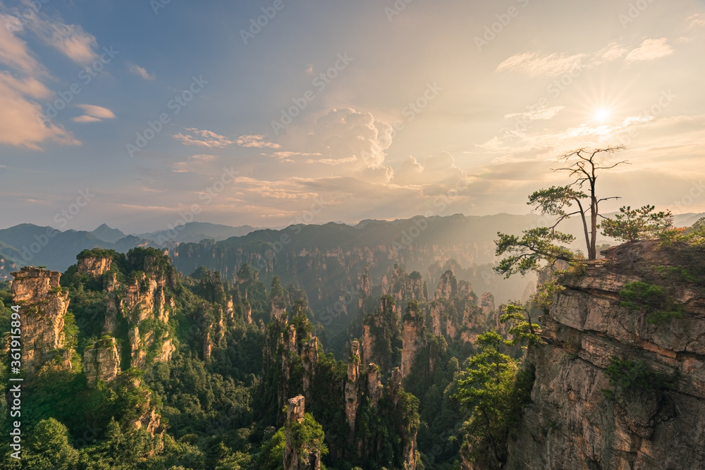 Fototapeta Asian tourist attraction, traveling in China Zhangjiajie National Forest Park.
