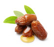 Jojoba oil on seeds isolated