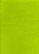 canvas print picture - Green fleece background texture