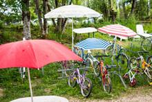 Parasol Et Vélo Dans Une Broc...