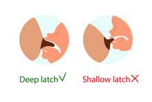 Breastfeeding, How To Apply To The Breast. Deep Latch, Shallow Latch. Correct Breastfeeding Position. Mother Feeds Baby With Breast. Vector Stock Illustration Isolated On White Background
