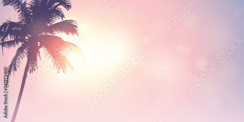 palm trees silhouette on a sunny day summer holiday design vector illustration EPS10