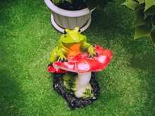 Garden Figurine Of A Frog And ...