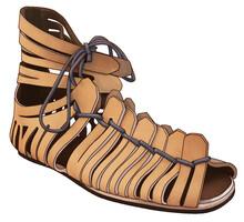 A Roman Caliga. Military Footw...