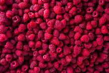 Fresh Organic Raspberries. Bac...