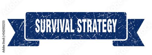 Obraz na plátně survival strategy ribbon
