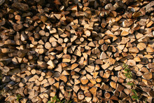 Big Beautiful Woodpile