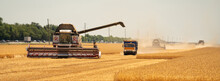 Combine Harvesters On The Field