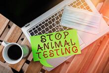 Word Writing Text Stop Animal ...