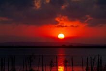 Sunset Over Albufera Freshwate...