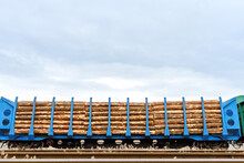 Freight Cars Loaded With Logs On Railway Tracks. Transportation Of Felled Forest