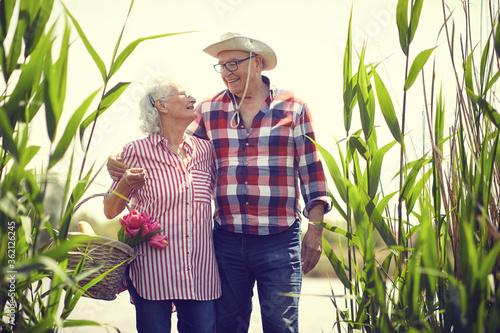Fototapeta Loving senior man and woman goes on the pond at picnic.  Senior people at picnic. obraz
