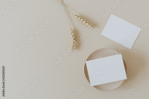 Fototapeta Blank paper sheet cards with mockup copy space and wheat / rye stalks on beige background. Minimal business brand template. Flat lay, top view. obraz
