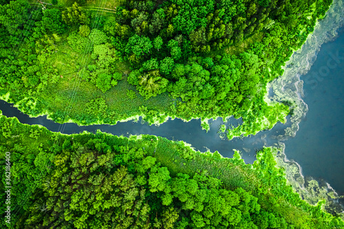 Beautiful green algae on the lake in spring, aerial view