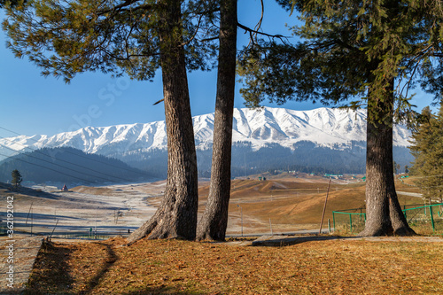 A view of Himalayan Mountains along pine trees in Gulmarg Wallpaper Mural