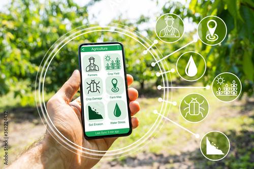 Obraz Smart Farming Digital Technology Agriculture App - fototapety do salonu