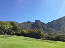 Kirstenbosch, Cape Town, South Africa