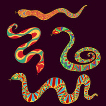 Collection Of Bright Ethnic Snakes Isolated On Dark Brown Background.