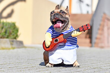 French Bulldog Dog With Mouth ...
